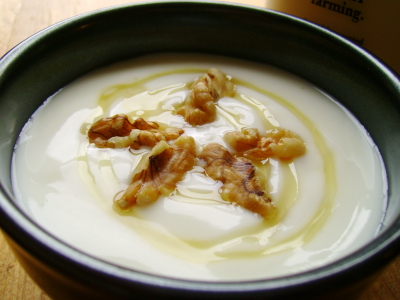 What Types of Yogurts Are Good for Stomach Disorders