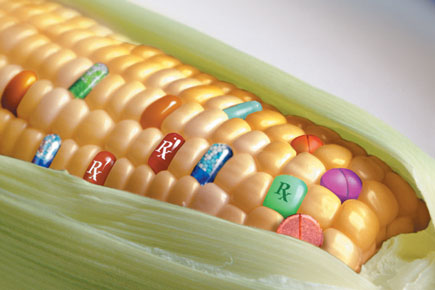 GMO Produce - Now Your Smartphone Will Know