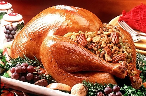 Thanksgiving Turkey: Real Vs Processed War