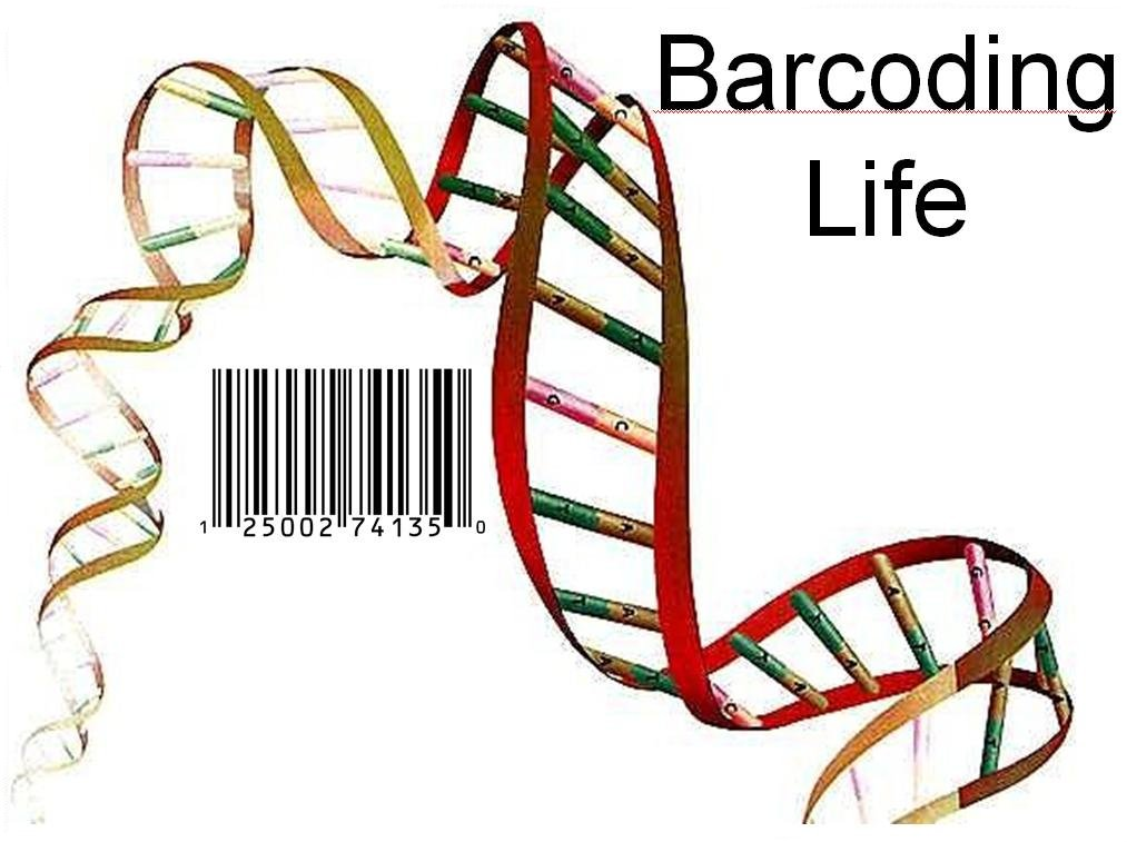 DNA Barcoding App - Eating Healthy Made Easier