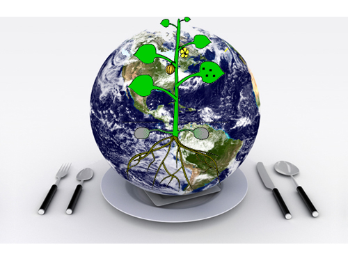 Celebrate Earth Day By Adding Every Part Of The Plant To Your Plate
