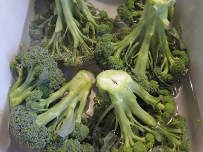 Clean broccoli in salt water