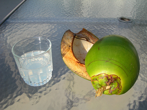 What Is The Difference Between Coconut Water &amp; Juice