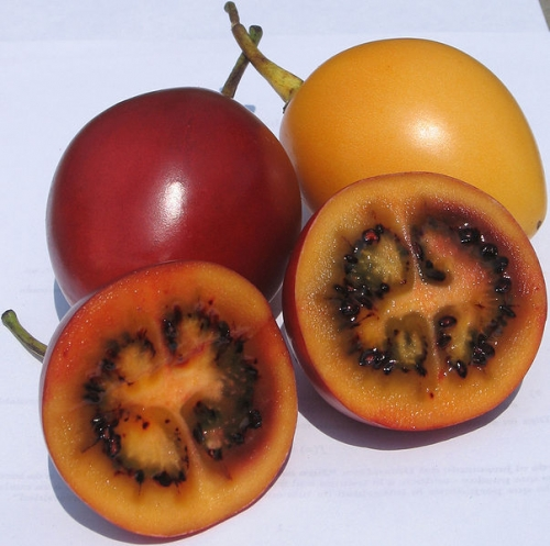 How To Eat Tamarillo?