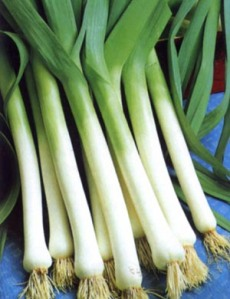How to Grow Leeks