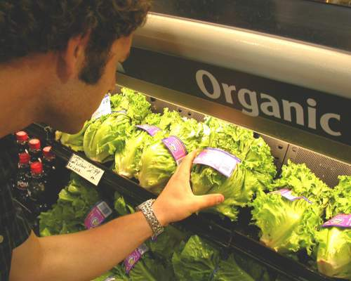 Organic Food - Can You Afford It?