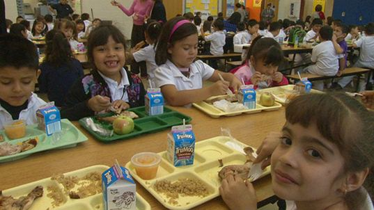Government To Serve Pink Slime In School Cafeterias