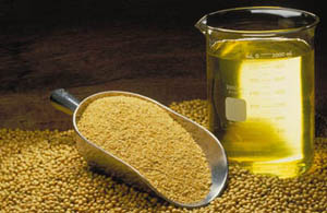 Soybean Oil For Hair Care