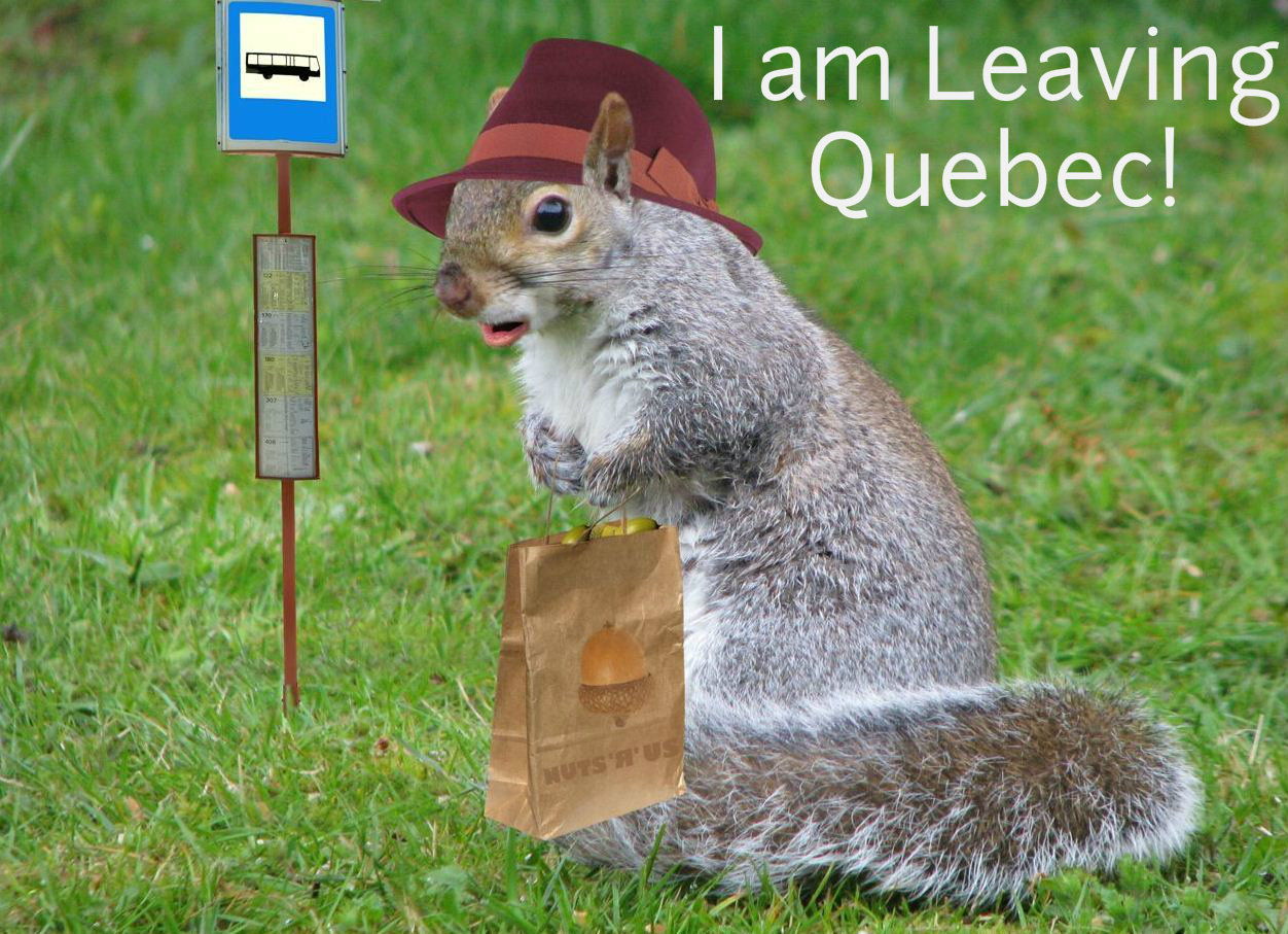 Quebec Woos Tourists With Game Meat