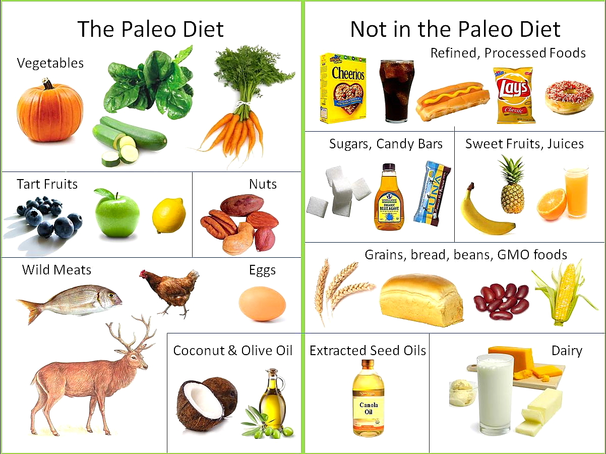 6 Dos On A Paleo Diet