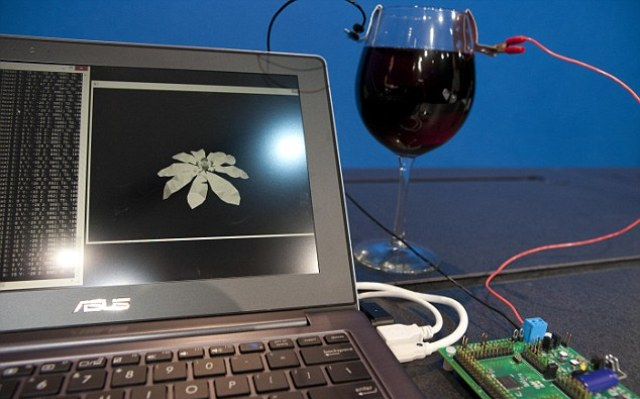 OMG! Intel Turns Wine Into Electricity
