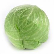 Cabbage before steaming