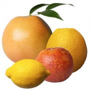 Benefits of citrus fruit diet