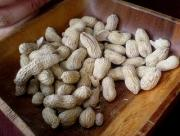 Grilled peanuts.
